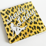 "the Balm ""Shady lady"" eyeshadow palette"